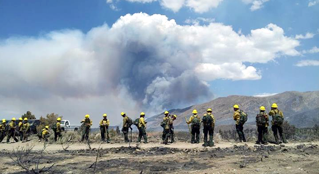 From National Service to Wildland Firefighting For One First